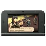 3DS 2e hands: Fire Emblem Awakening