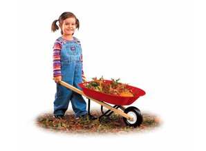 Radio Flyer Kids Kruiwagen