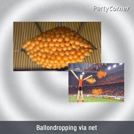 Ballonnen Dropping via net