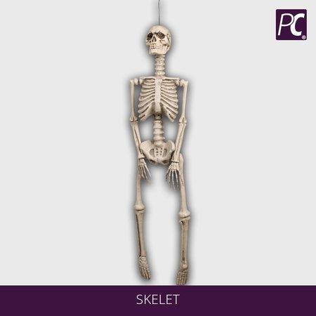 Skelet 92x25cm.