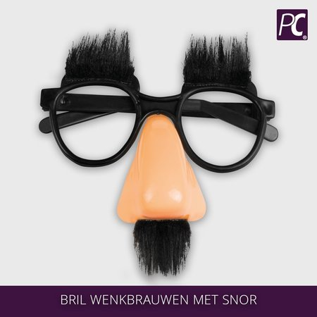 Bril wenkbrauwen met snor