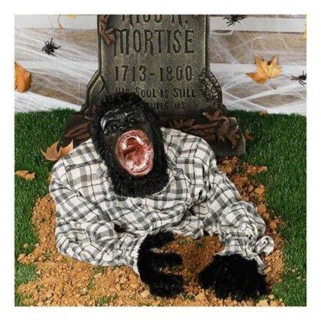 Halloween Bewegende aap met geluid