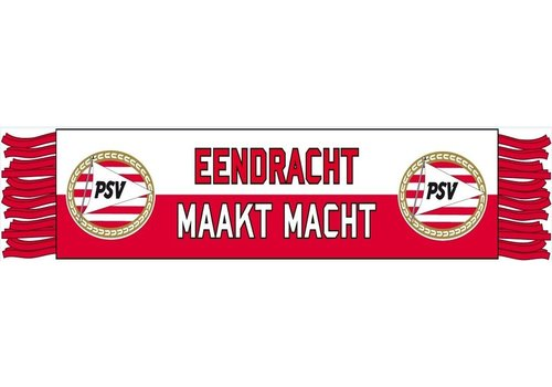 PSV Minisjaal psv eendracht