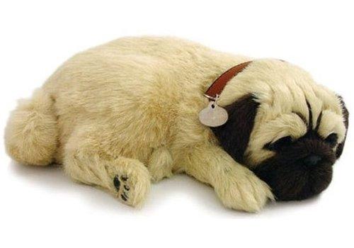 ADO den Haag Perfect Petzzz soft Pug