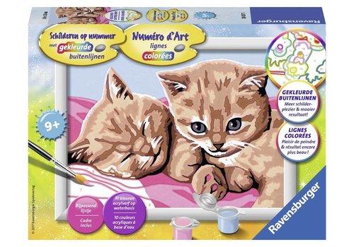 Katten Schilderen op nummer (280575)