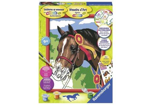 Paard concours Schilderen op nummer (286355)