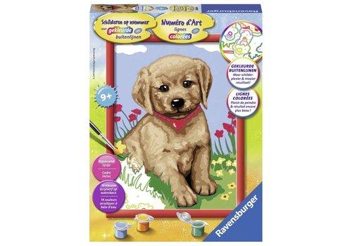 Puppy Schilderen op nummer (286201)