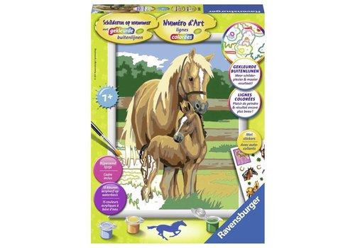 Paardenliefde Schilderen op nummer (286300)