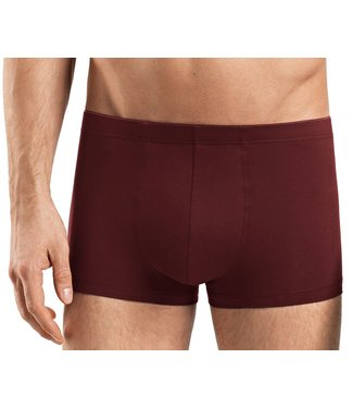 Cotton Superior Pant Burgundy