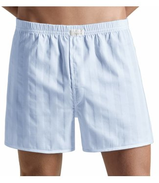 Retro Boxer Light Blue