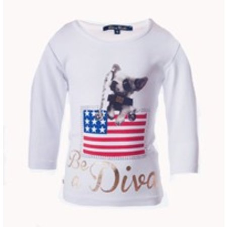 Be A Diva  shirt American Puppy