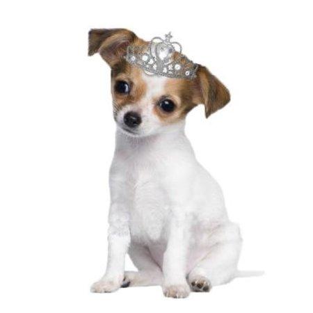 Strijkapplicatie Puppy Dog