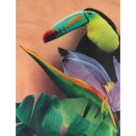 Molo slippers flipflops Birds