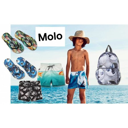 Molo slippers flipflops surfboards