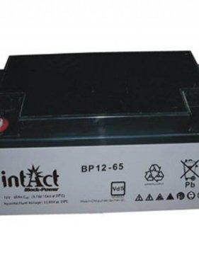 Intact AGM Solar-Accu 12V/65Ah