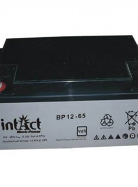 Intact AGM Solar Battery 12V/65Ah