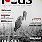Focus Focus 6 2016