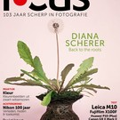 Focus 5 2017