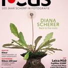 Focus Focus 5 2017