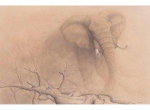 African Dust -WWF Edition (135 x 95 cm)
