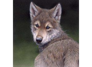 Wolf Pup (35 x 35 cm)