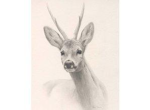 Schets Reebok (35 x 45 cm)