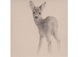 Roe Fawn (40 x 40 cm)