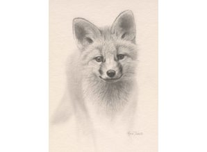 Young Fox (20 x 30 cm)