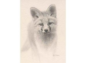 Young Fox (20 x 30 cm)