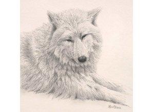 Wolf portret (25 x 25 cm)