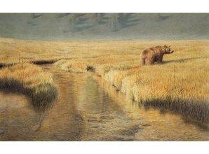 Grote bruine beer (67 x 45 cm)