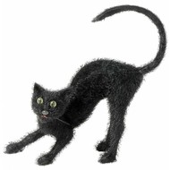 Halloweenaccessoires zwarte kater