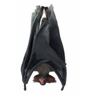 Halloweenaccessoires slapende vleermuis 33cm