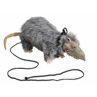Halloweenaccessoires: Laat je rat uit