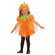 Halloweenkostuum kleine pompoen