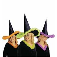 Halloweenaccessoires: Heksenhoed met maraboe