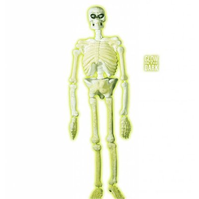 Halloweenaccessoires 3d plastic laboratorium skelet 150cm