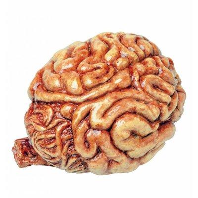 Nep hersenen voor Halloween