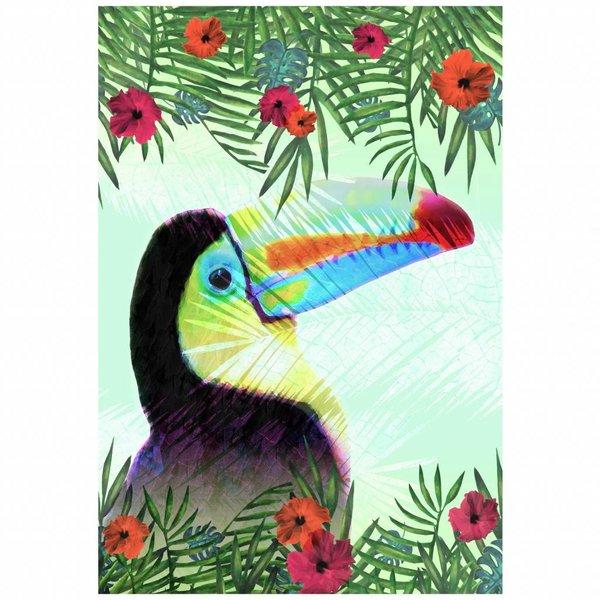 droogdoek Toucan