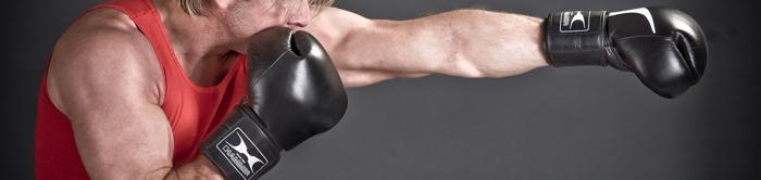 Hammer Boxing Bokshandschoenen