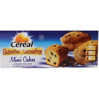 Céréal Cake - Mini 6 pièces