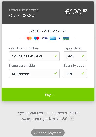 Creditcard betaling voorbeeld