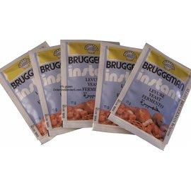 Diversen Dry sachets de levure instantanée 5 x 11 g