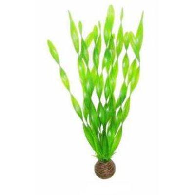 Superfish Easy plants hoog 30 cm NR.6