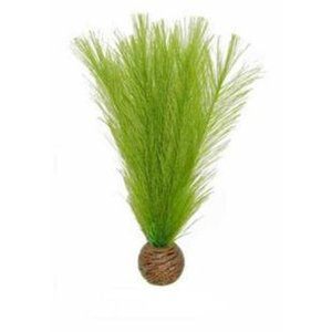 Superfish Easy plants middel 20 cm Nr.11 Zijde