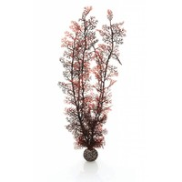 biOrb Sea fan crimson extra large 48cm