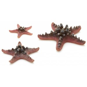 biOrb Sea stars 3x roze