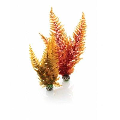 biOrb Easy plants 2x medium herfst varen