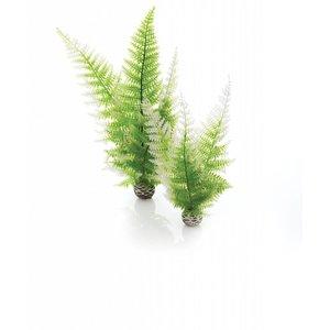 biOrb Easy plants 2x medium winter varen