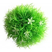 biOrb Moss ball with Daisies